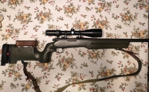 Remington 700 sps varmint