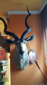kudu preparátum