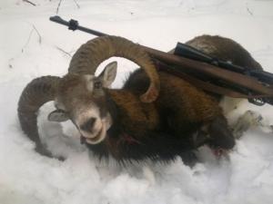 Hivatásos vadászi állás