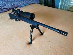 Remington M700 + Vortex Strike Eagle 5x25x56