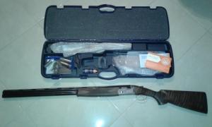 Beretta Silver Piegon 1