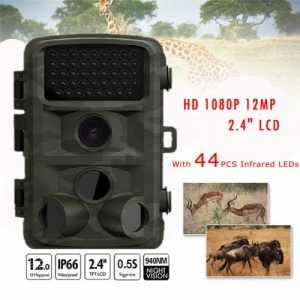 Digital Trail Camera DT:2