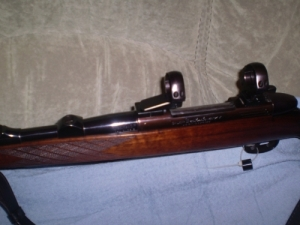 Sauer-Weatherby