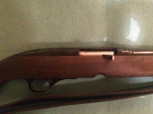 Winchester M100 243 Win.