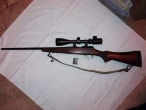Luger 22 WMR