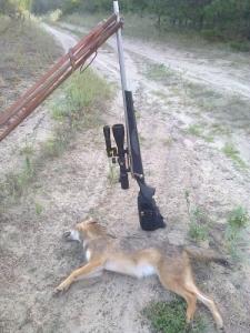 Remington 700 vsf