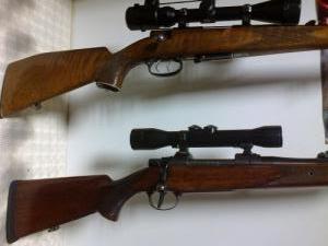ZKK600,Anschütz.22hornet