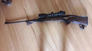 Steyr-Mannlicher 3006