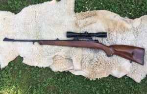 VZ 24 Mauser 30-06