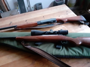Marlin 30.06 Remington 870
