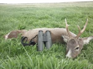 Hivatásos vadász / vadőr / állás Alföldi vadászterületen