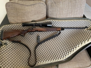 Remington 700 BDL DM