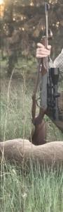 Golyos puska
