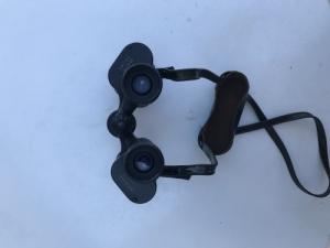 Swarovski-optik falke 10x40