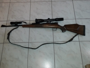 Original Mauser 66