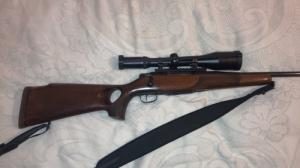 Sauer M80