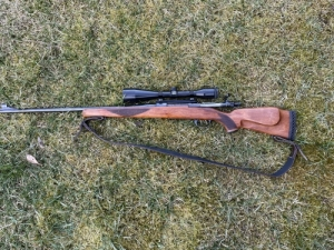 Zastava Arms Mauser 243win. Yukon photon xt 4.6x42L